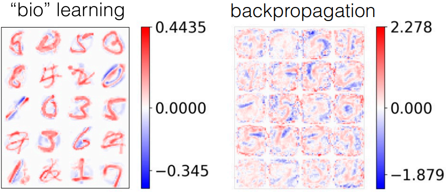 "PyTorch Implementation of ""Unsupervised learning by competing hidden"